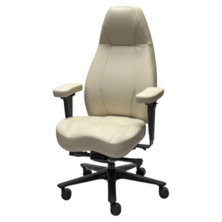 Lifeform® chairs 2490 High-back